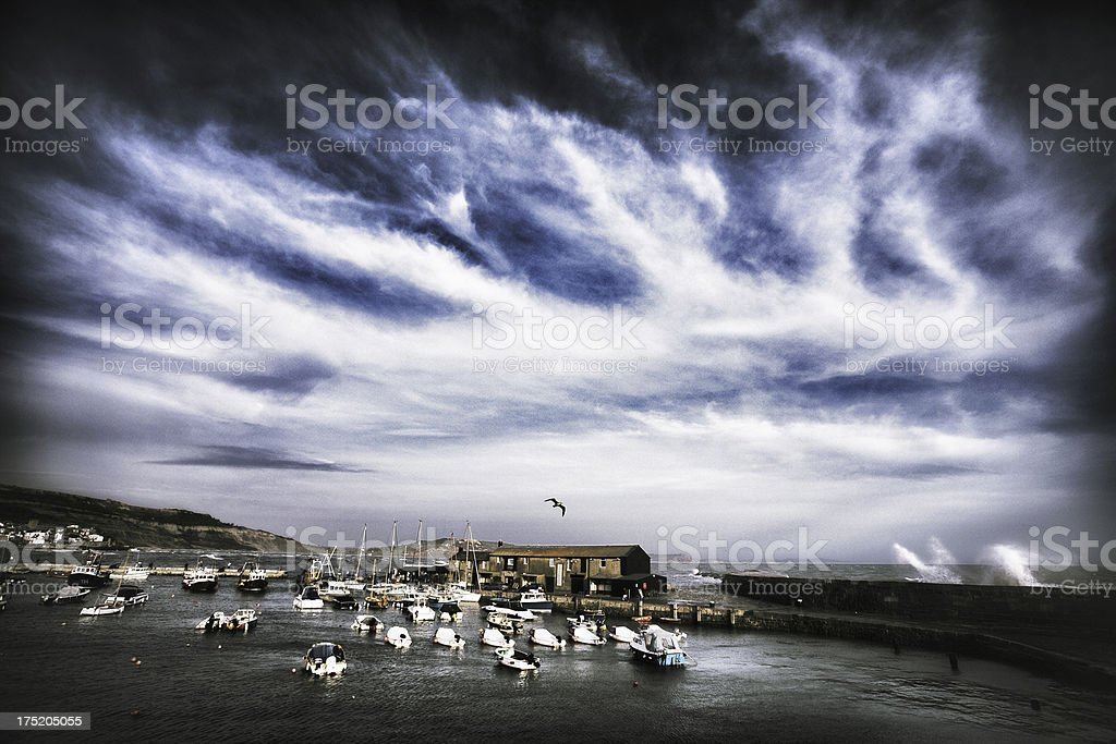 Stormy Cobb royalty-free stock photo