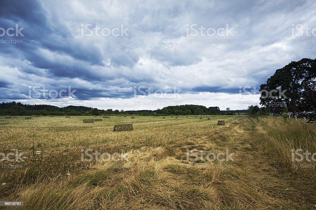 Stormy Hay field stock photo