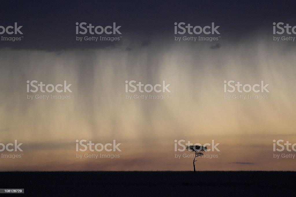 Stormy Kenyan Landscape royalty-free stock photo