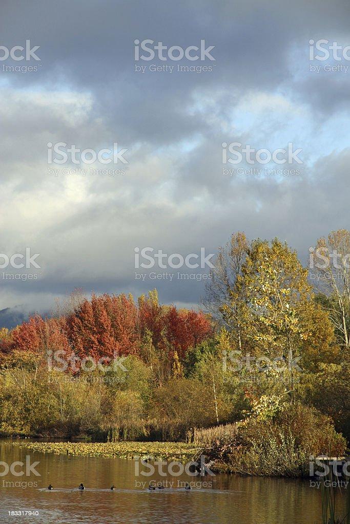 Stormy Lake stock photo