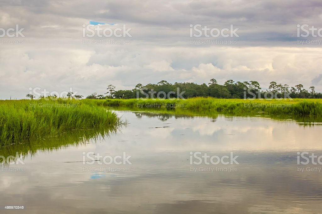 Stormy Marsh stock photo