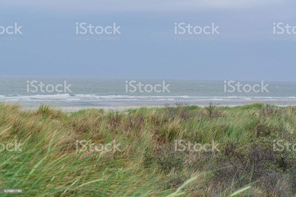 Stormy North Sea in Holland. stock photo