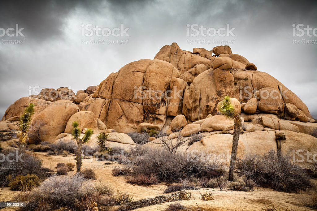 Stormy Weather In A Rocky Joshua Tree National Park Landscape royalty-free stock photo