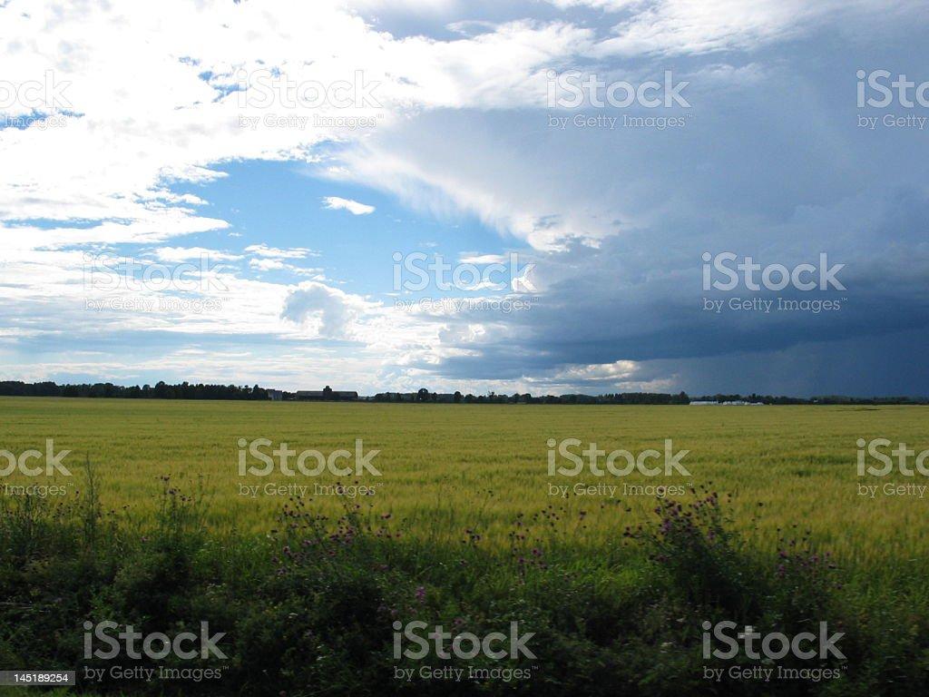 Штормовая погода в Швеции Стоковые фото Стоковая фотография
