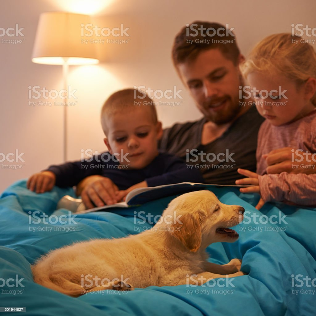 Story time for everyone stock photo