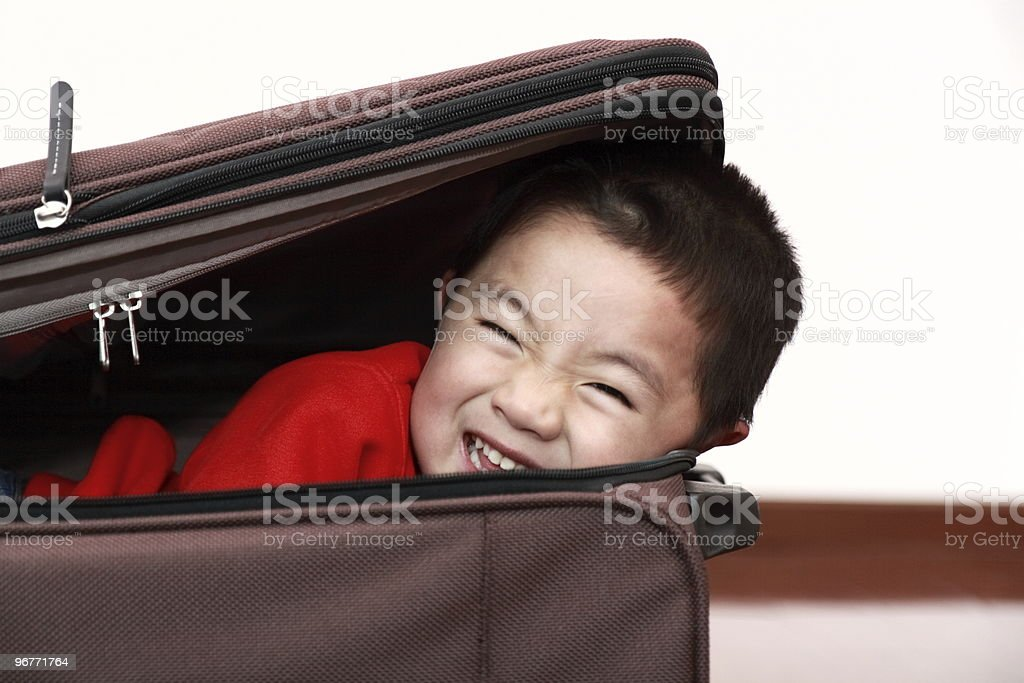 stowaway royalty-free stock photo