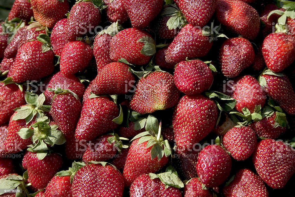 Straberry in India royalty-free stock photo