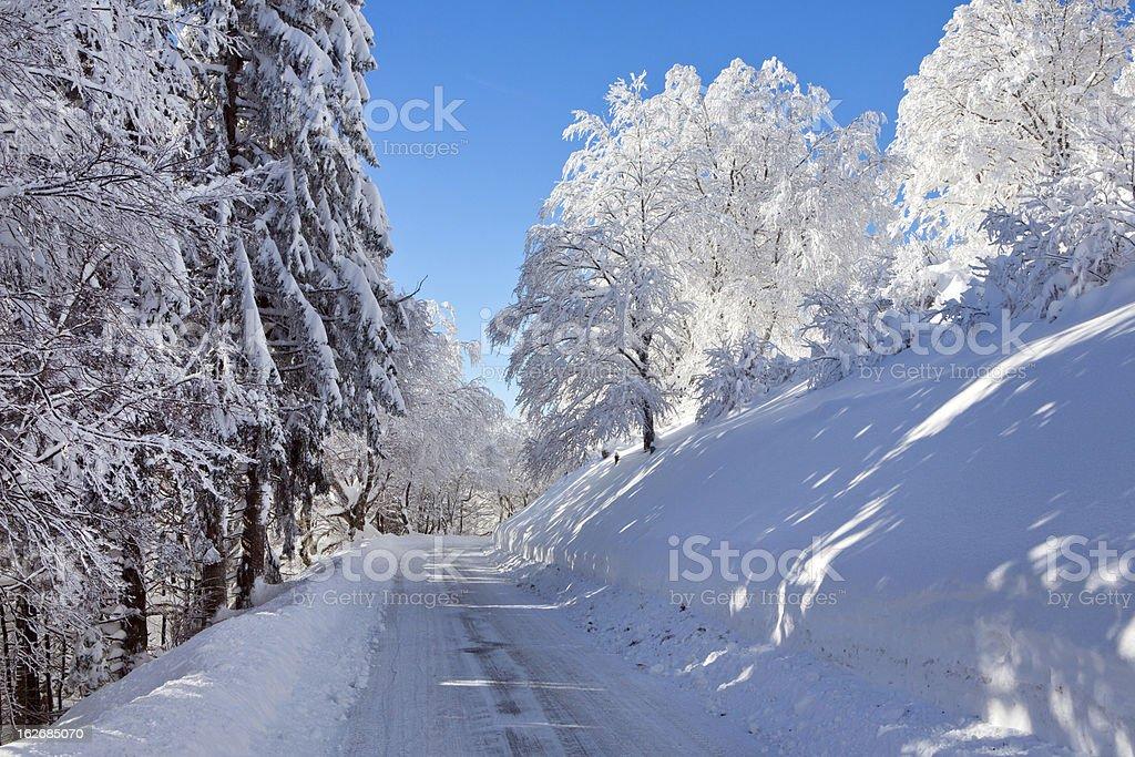 Straße ,Winter, Schnee, Frost, Wald, Schwarzwald royalty-free stock photo