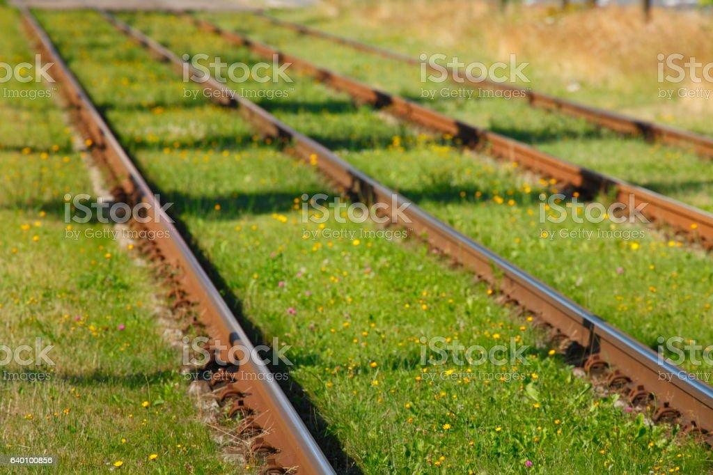 Straßenbahnschienen stock photo
