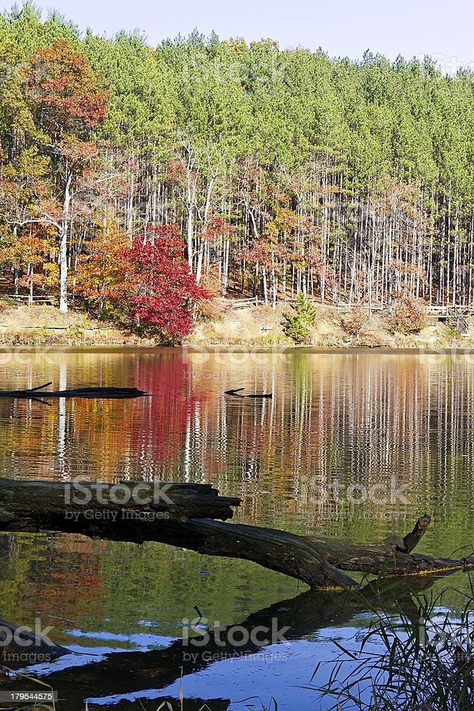 Strahl Lake Autumn stock photo