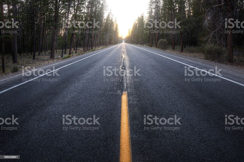 Straight forest road royalty-free stock photo