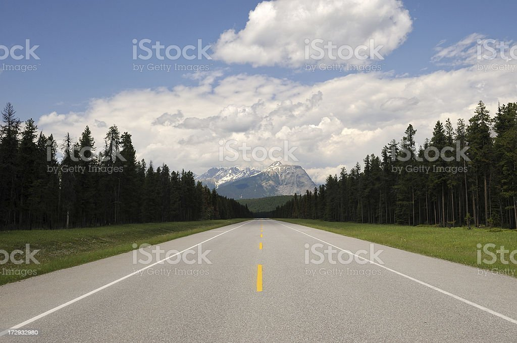 Straight Road Through Forest and Mountains royalty-free stock photo