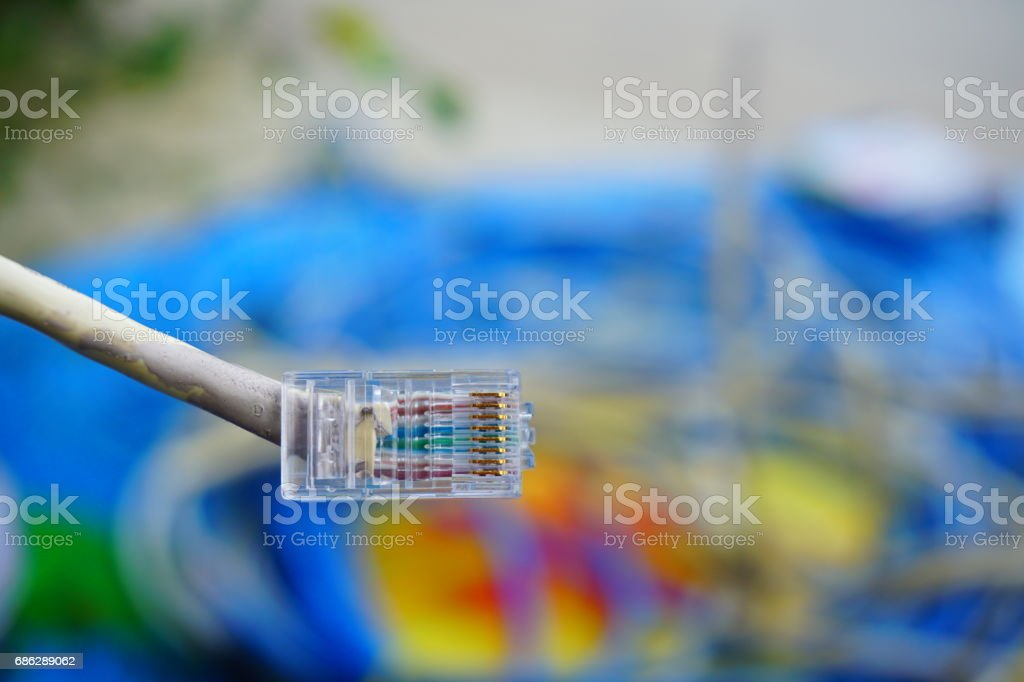 Straight yellow lan cable with plug stock photo