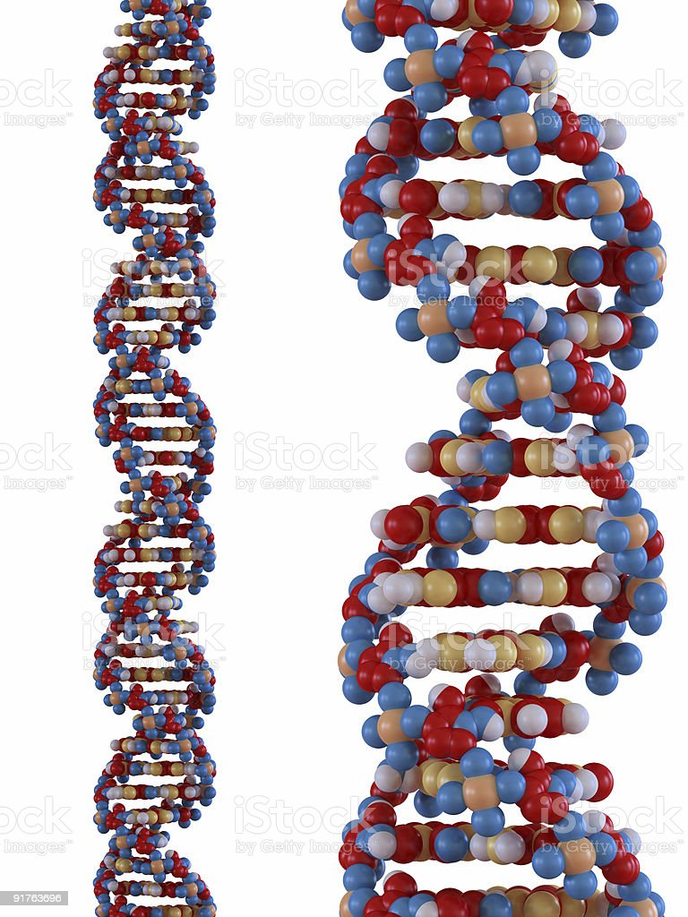DNA strand royalty-free stock photo