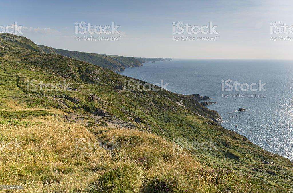 Strangles near Crackington Haven North Cornwall stock photo