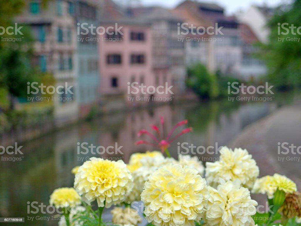 Strasbourg, Alsace: Picturesque scene in the quarter La Petite France stock photo