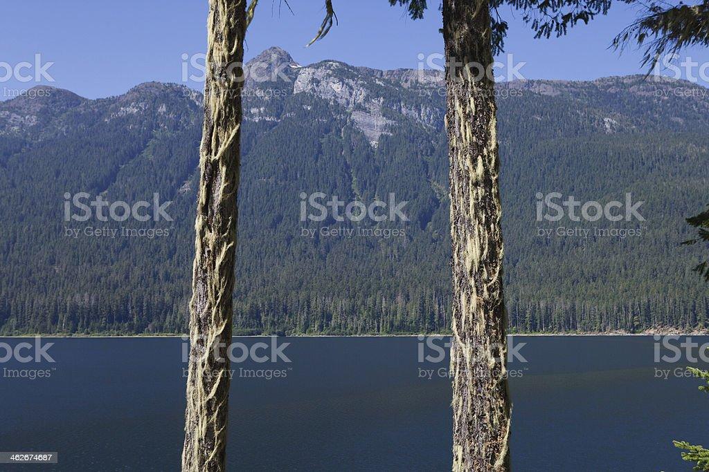 Strathcona Provincial Park royalty-free stock photo