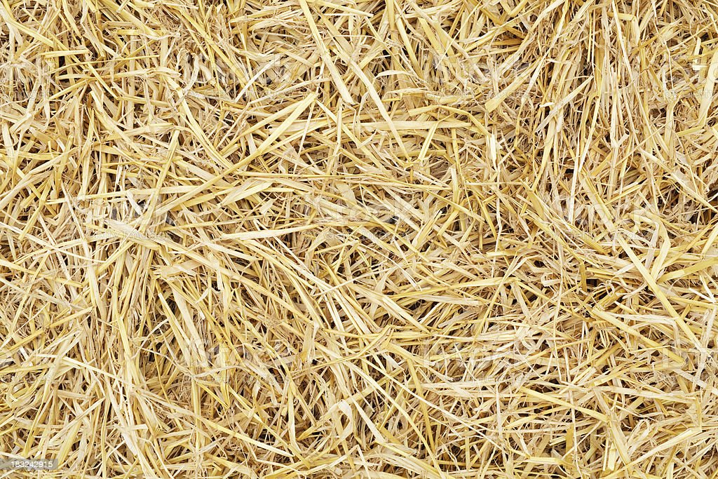 Straw background stock photo