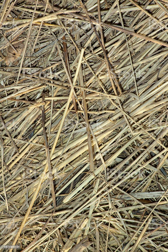 straw background royalty-free stock photo