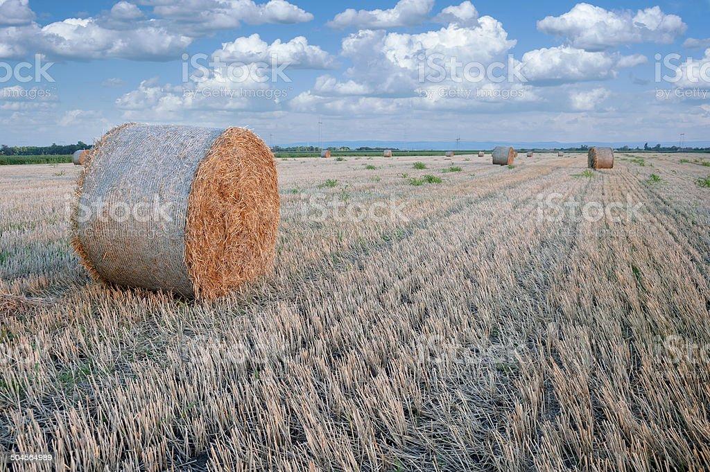 Straw bale / hey stack stock photo