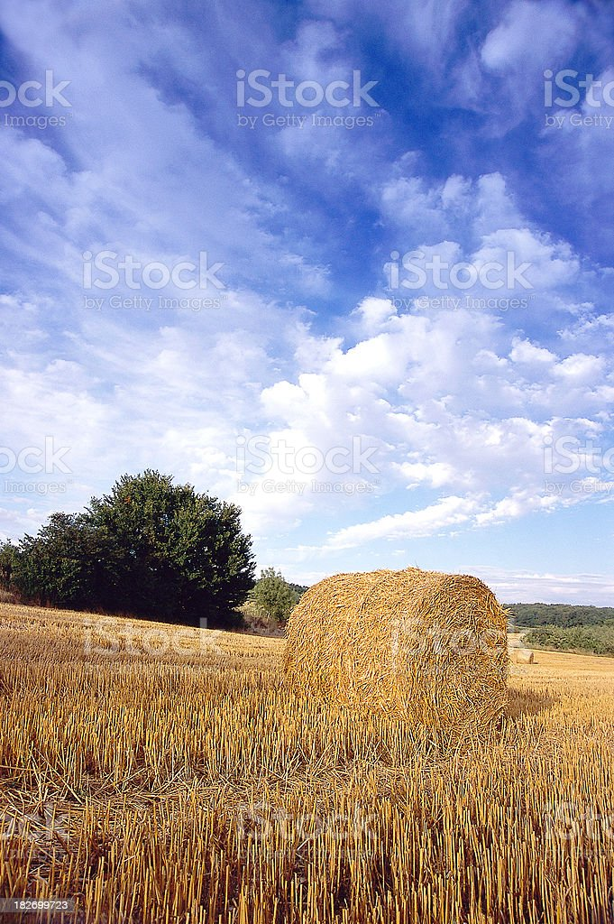 Straw bale in France royalty-free stock photo