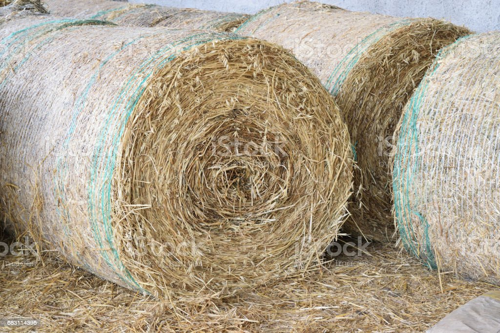 straw bale rolled up stock photo