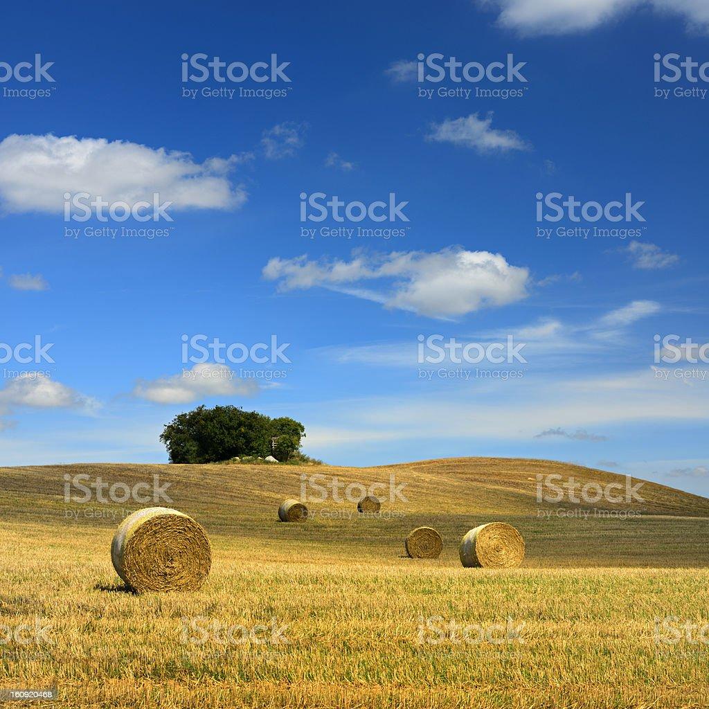 Straw Bales in Stubble Field under Moody Sky stock photo