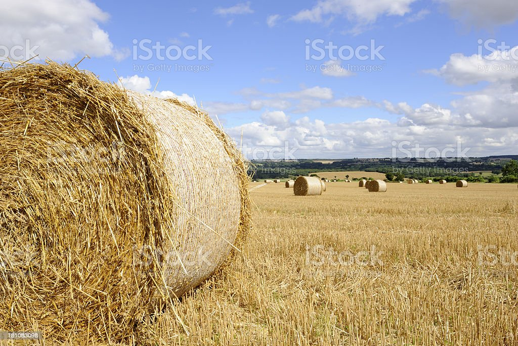 Straw bales in the sun after harvest royalty-free stock photo