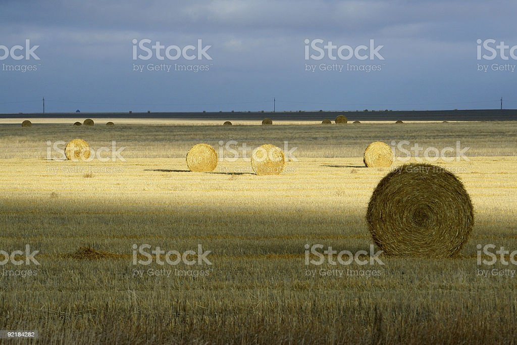 Straw bales in the sun royalty-free stock photo