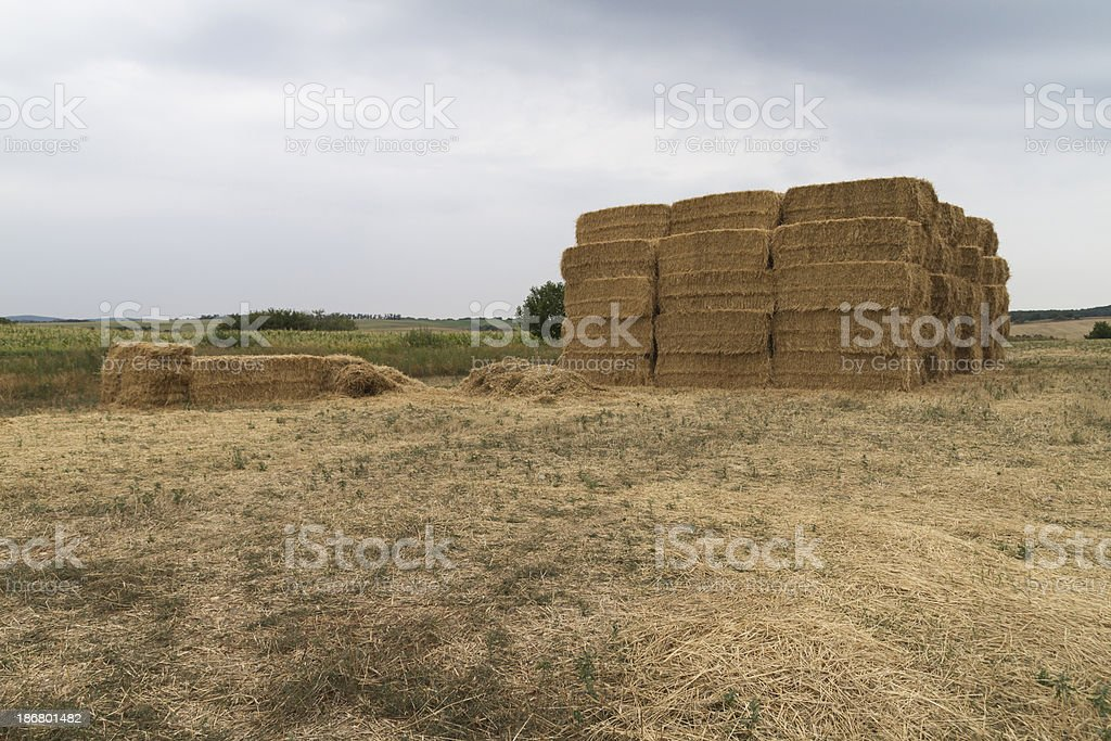 Straw bales on the field royalty-free stock photo