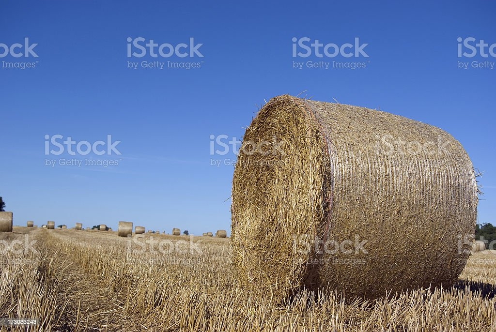 Straw Bales on the Horizon royalty-free stock photo