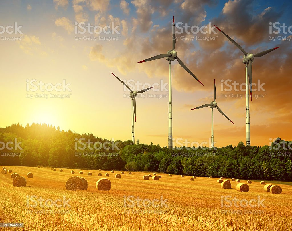 Straw bales with wind turbines on farmland stock photo