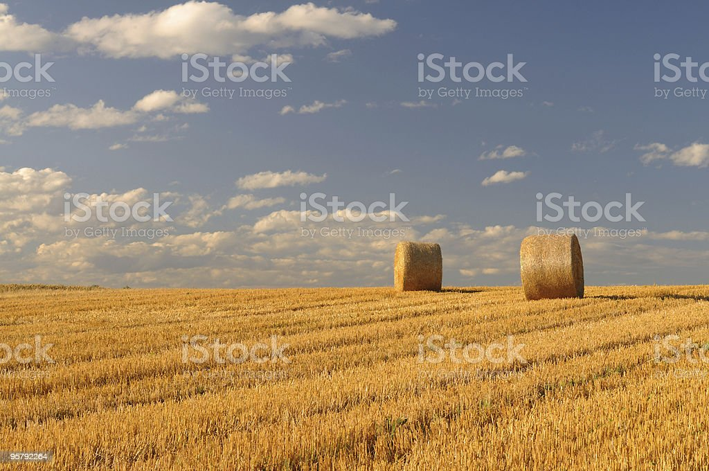 Straw Balls at Horizon stock photo