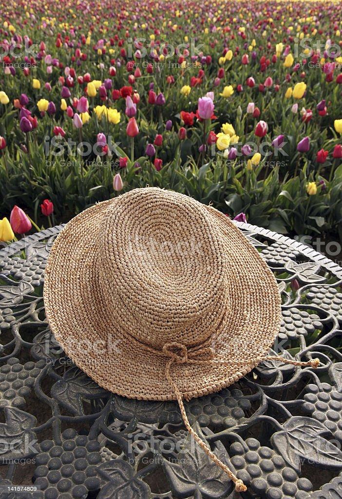 Straw hat in tulip flower field royalty-free stock photo