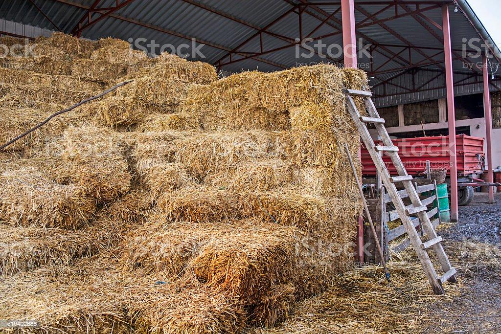 Straw in the village yard stock photo