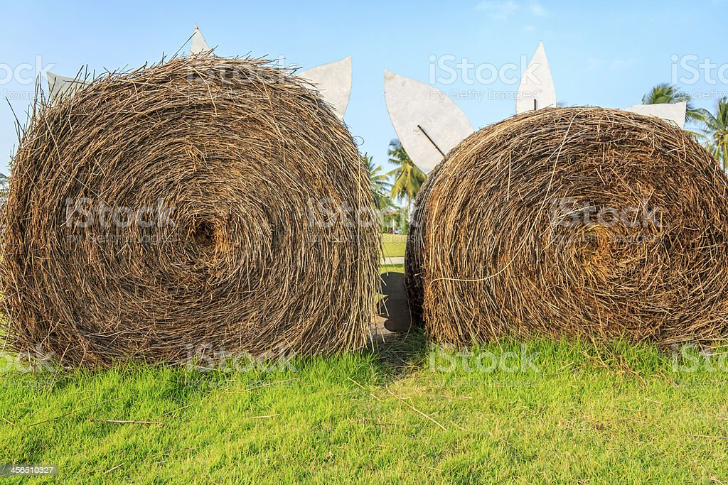 Straw On Green Grass royalty-free stock photo