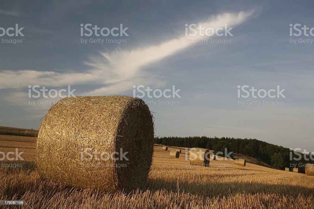 Straw roles stock photo