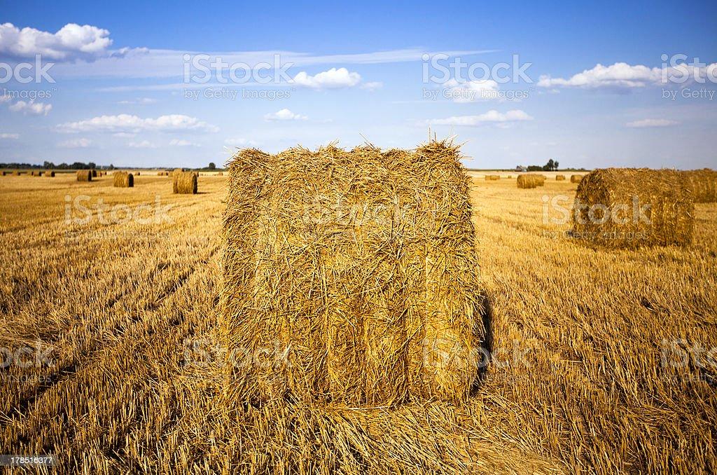 straw stack royalty-free stock photo