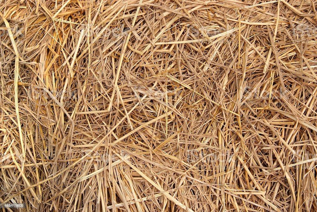 Straw texture background stock photo