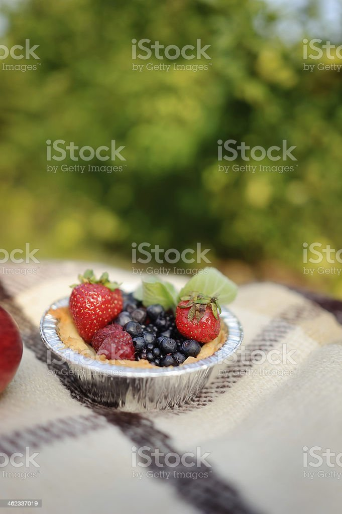 strawberries and blueberries royalty-free stock photo