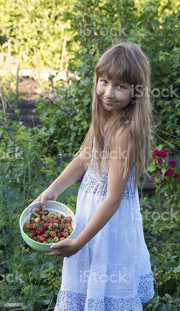 Strawberries held by girl. royalty-free stock photo