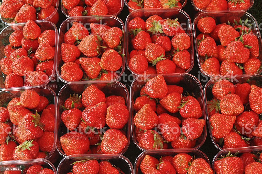Strawberries in cups stock photo