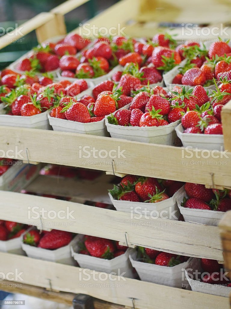Strawberries market stock photo