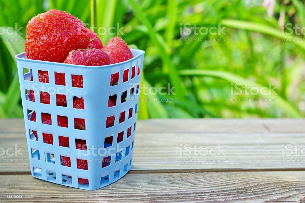 Strawberries. Summer Ripe and Juicy Berryes. royalty-free stock photo