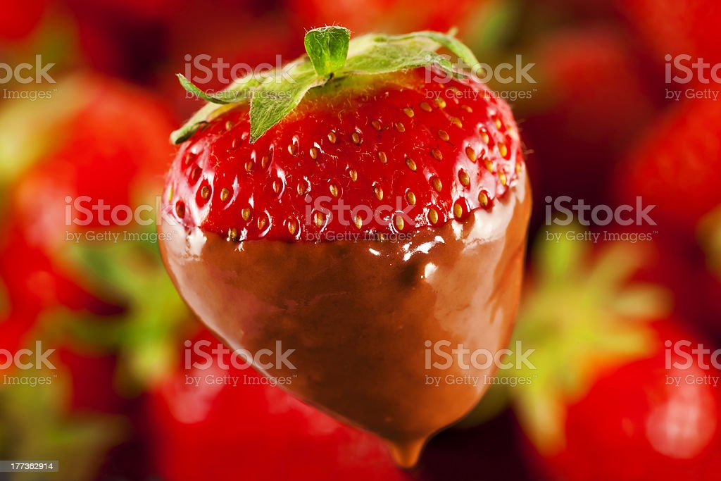 strawberries with chocolate royalty-free stock photo