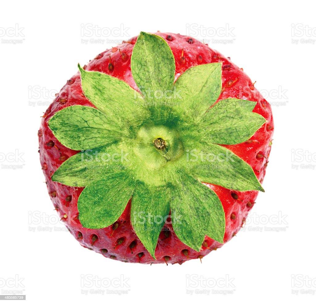 Strawberry calyx royalty-free stock photo