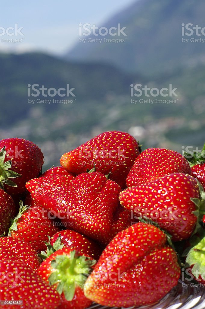 Strawberry hills royalty-free stock photo