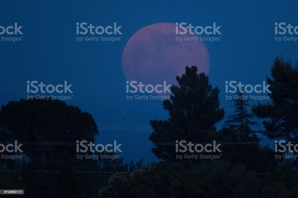 Strawberry Moon Rising stock photo