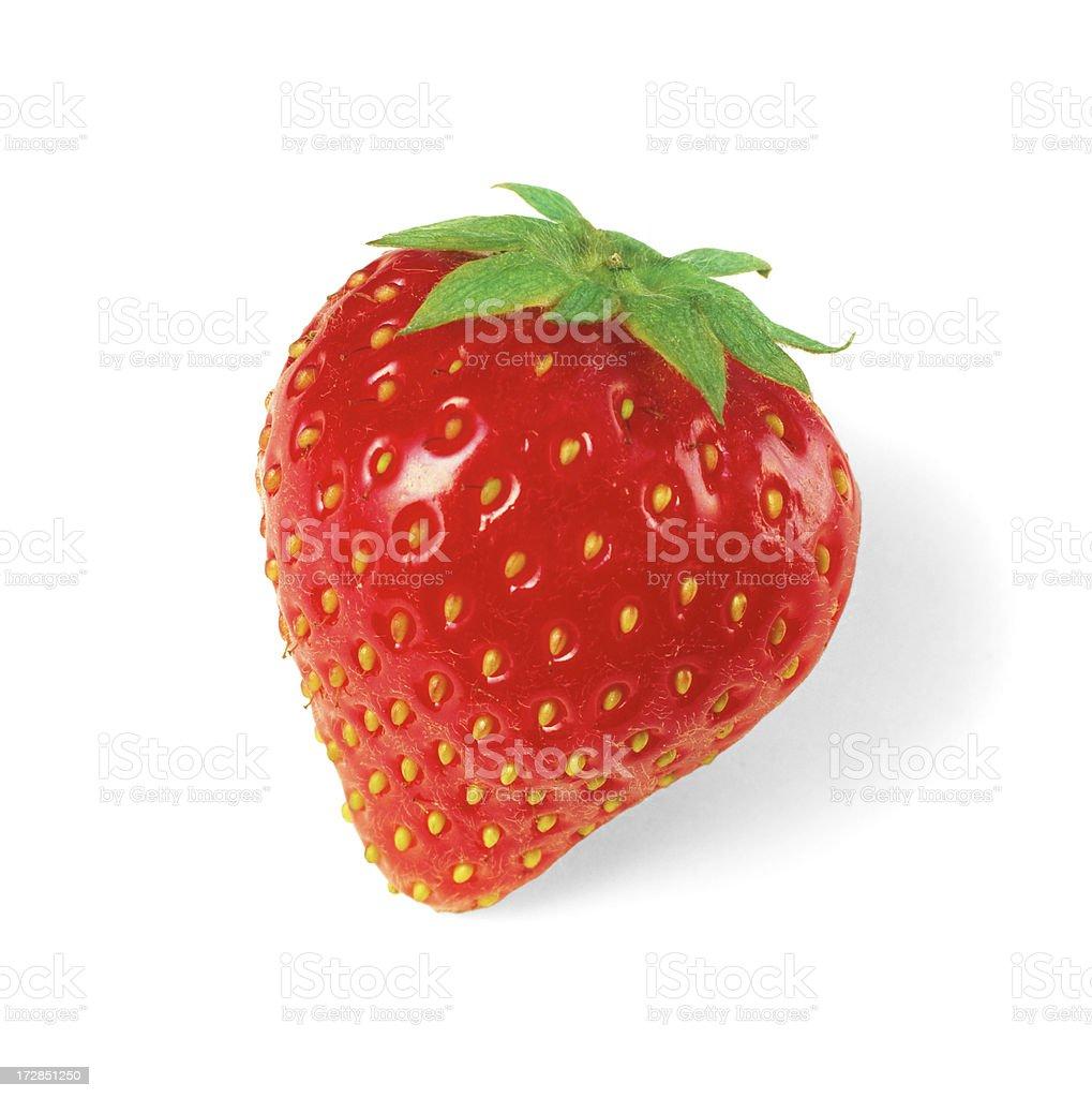Strawberry solo royalty-free stock photo
