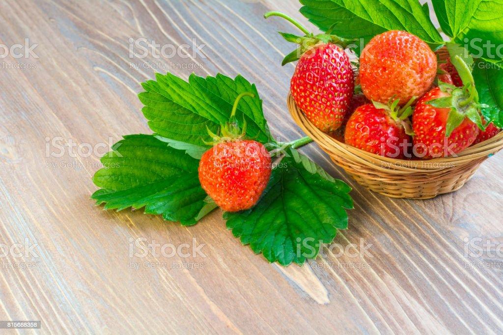 strawberry1 stock photo